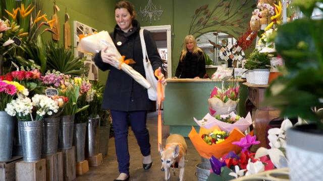 Woman with her assistance animal in a florist